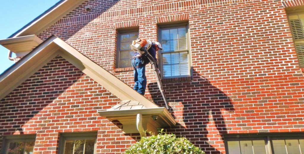 gutter cleaning roswell