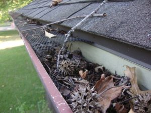 clogged gutter that needs repaired and cleaned