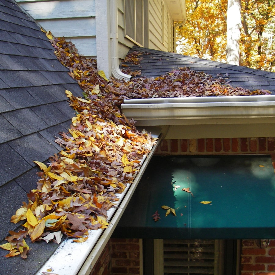 Advanced Pressure Washing & Gutter Cleaning Services